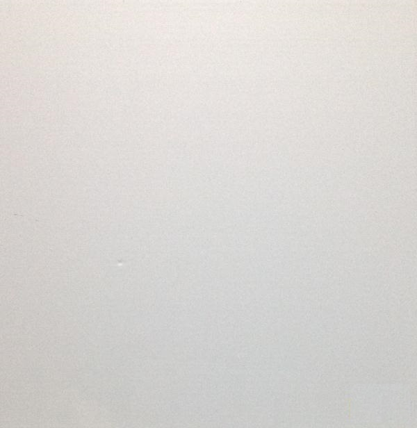 Mẫu tấm trần nhựa thả PVC 2
